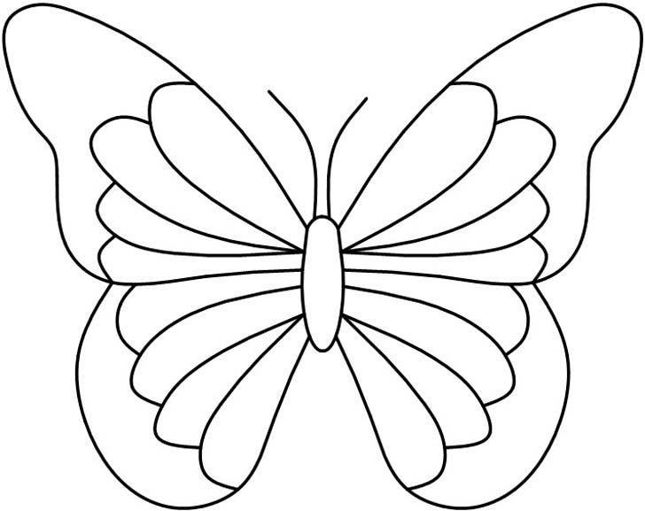 146 best butterflies :: pics ideas designs images on Pinterest