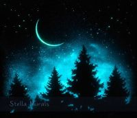 25+ best ideas about Night Sky Painting on Pinterest