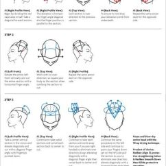 Hair Color Placement Diagram 2001 Ford F250 Headlight Switch Wiring 63 Best Images About Haircut On Pinterest | Cosmetology, Graduated And School ...