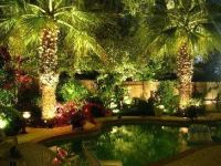 1000+ ideas about Tropical Backyard on Pinterest ...