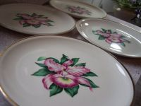 17 Best ideas about Tropical Dinnerware on Pinterest