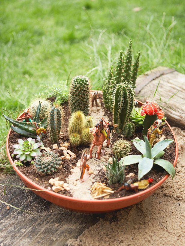 27 Best Images About Basket And Dish Garden On Pinterest Gardens
