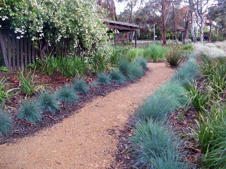 44 Best Images About Native Garden Designs On Pinterest Kangaroo