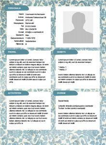 Gratis Creatief CV Sjabloon Van Cv Voorbeeld Nl
