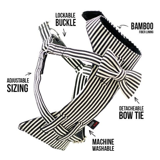Best 25+ Dog harness ideas on Pinterest