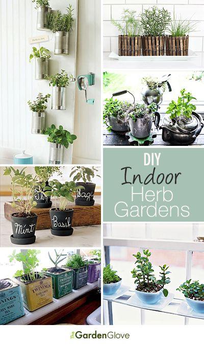 181 Best Images About DIY Gardening Tips On Pinterest Gardens