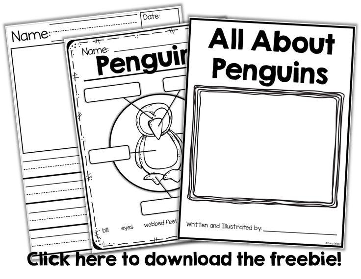 1000+ ideas about Animal Print Classroom on Pinterest