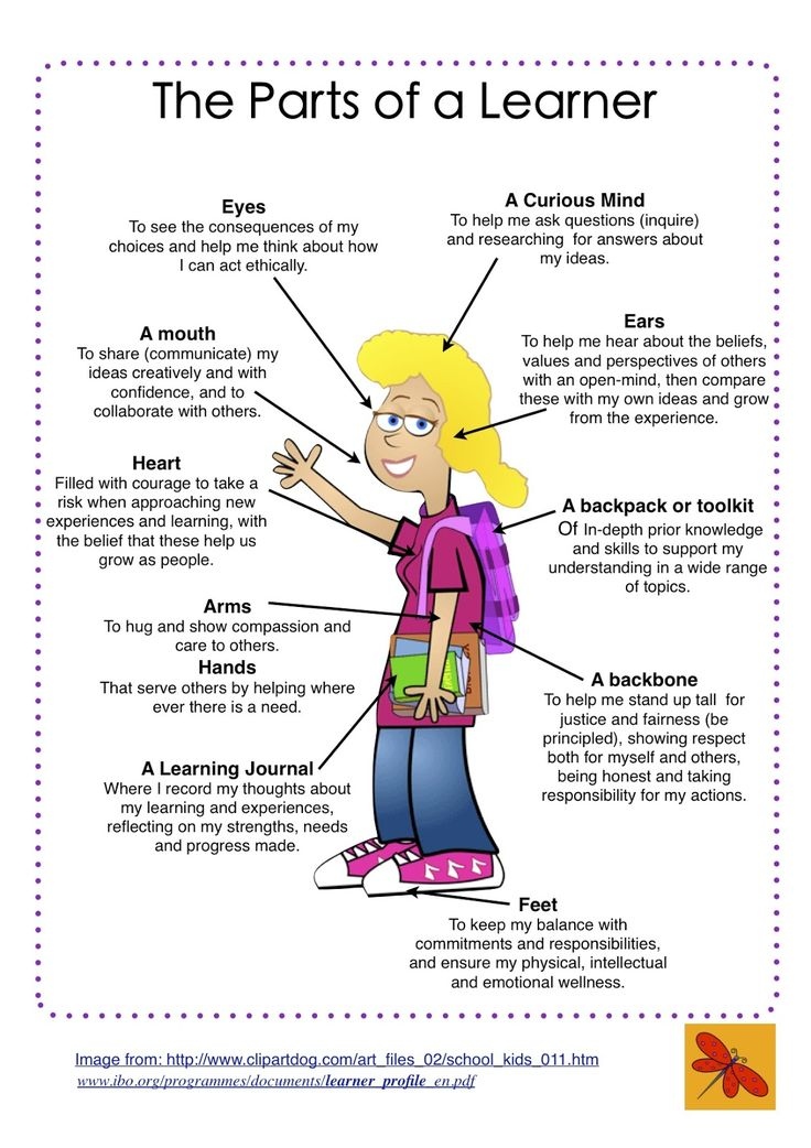 Great Ways To Engage Students In Learning About The