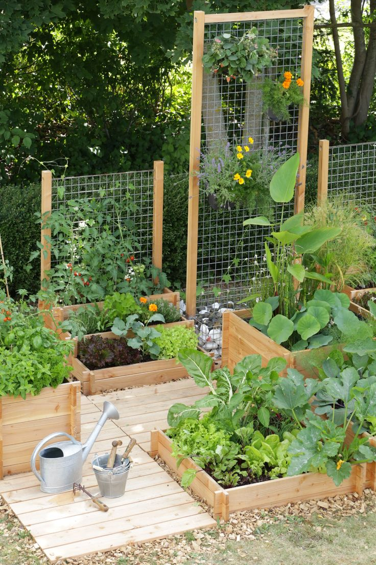 25 Best Ideas About Small Space Gardening On Pinterest