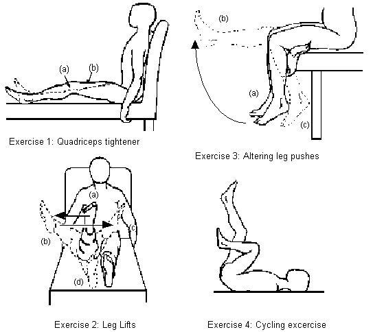 21 best images about Low Back Pain Exercises Patient