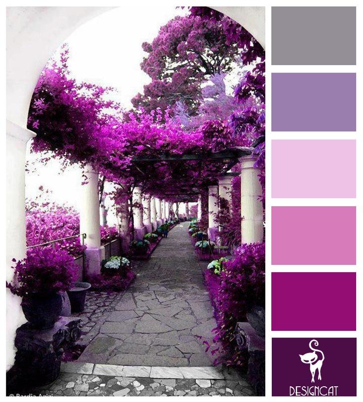 Lilac Heaven Purple Lilac White Pink Grey  Colour