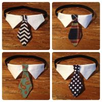 17 Best ideas about Collar Option on Pinterest | Sewing ...