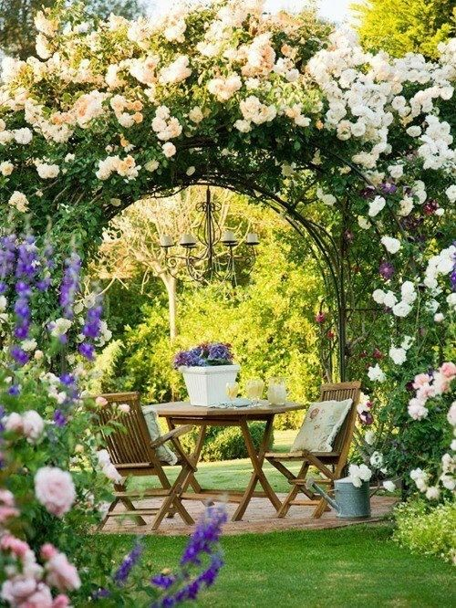 25 Best Images About Garden Arches On Pinterest Gardens The