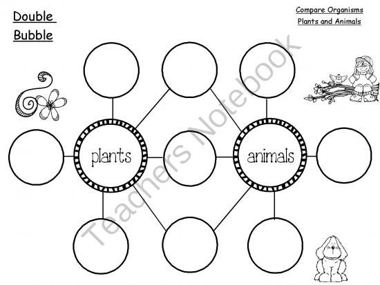 1000+ ideas about Thinking Maps Math on Pinterest