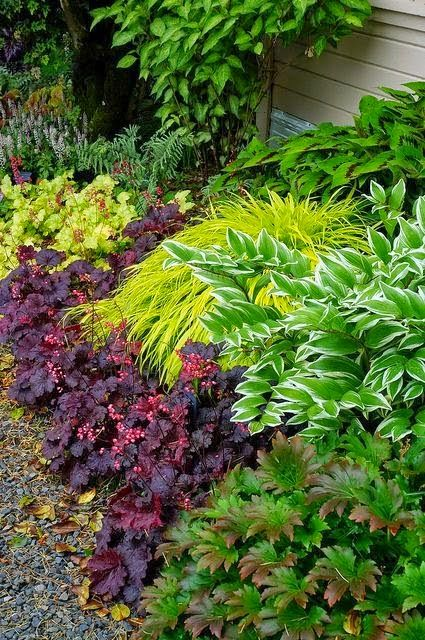 25 Best Ideas About Shade Garden On Pinterest Shade Landscaping
