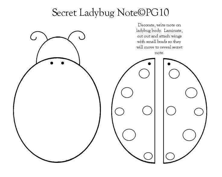 17 Best Images About Ladybug