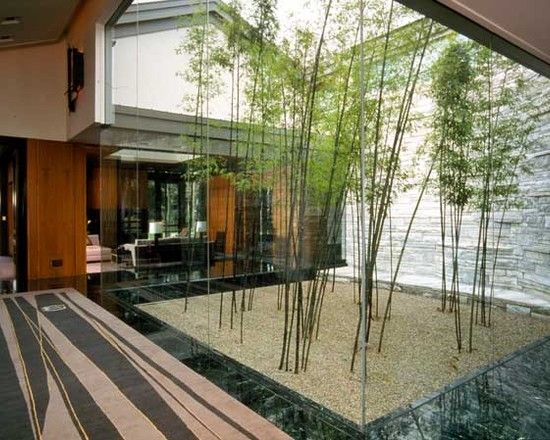 Bamboo Landscape Ideas At Houzz Com More Bamboo Photos At