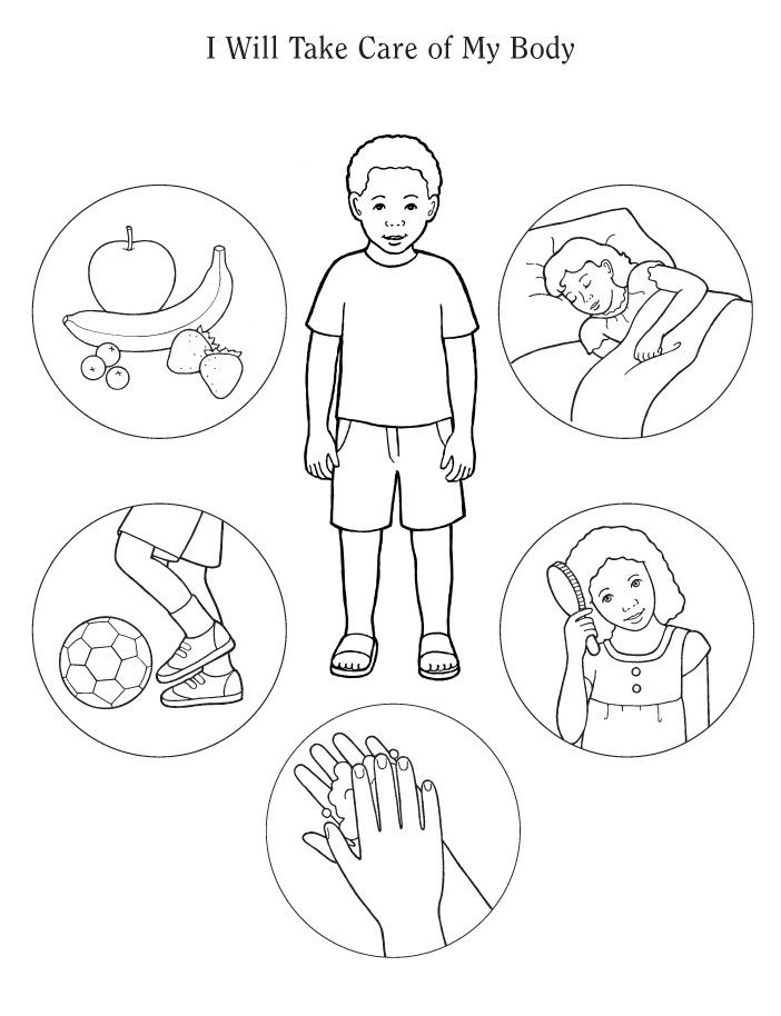 Best 20+ Body preschool ideas on Pinterest