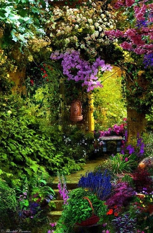 25 Best Ideas About Enchanted Garden On Pinterest Woodland