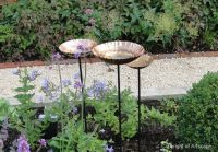 Top 25 ideas about Cotswold Gravel on Pinterest