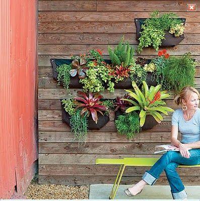 25 Best Ideas About Succulent Wall Gardens On Pinterest