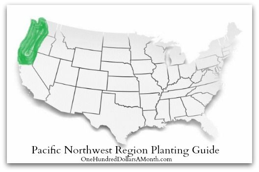 1000+ images about Pacific Northwest Gardening on