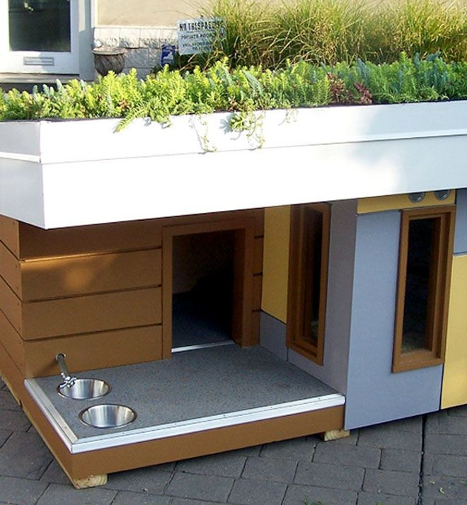 25 Best Ideas about Dog House Plans on Pinterest  Dog houses Build a dog house and Outdoor