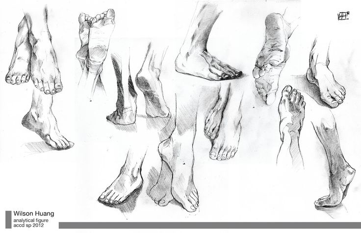 17 Best images about Figure drawing resources on Pinterest
