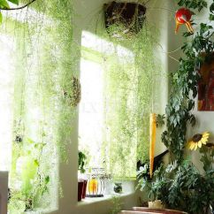 Kitchen And Bathroom Window Curtains Discount Plants, Hanging Plants Balconies On Pinterest