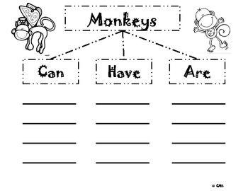 100 best Monkey Theme images on Pinterest