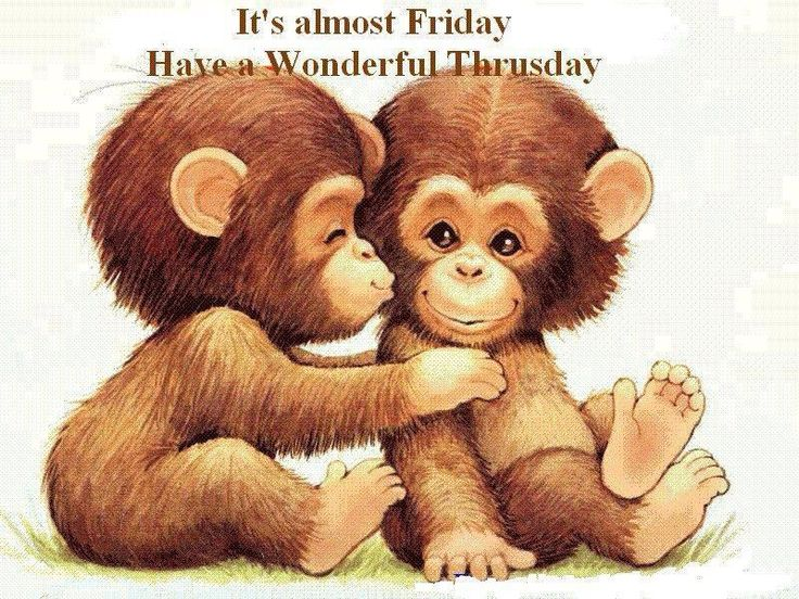 Monkeys And Bananas Cute Wallpaper It S Almost Friday Cricut Monkey Ideas Pinterest