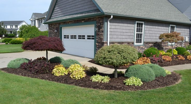 Using Heuchera Coral Bells to add color to a landscape