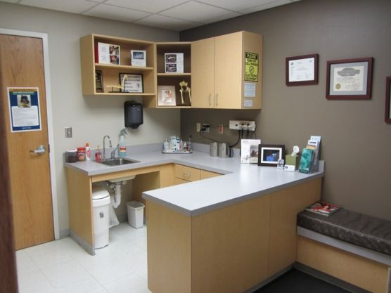 Exam Rooms  Skaer Veterinary Clinic  heathers wedding  Pinterest  Image search and Offices
