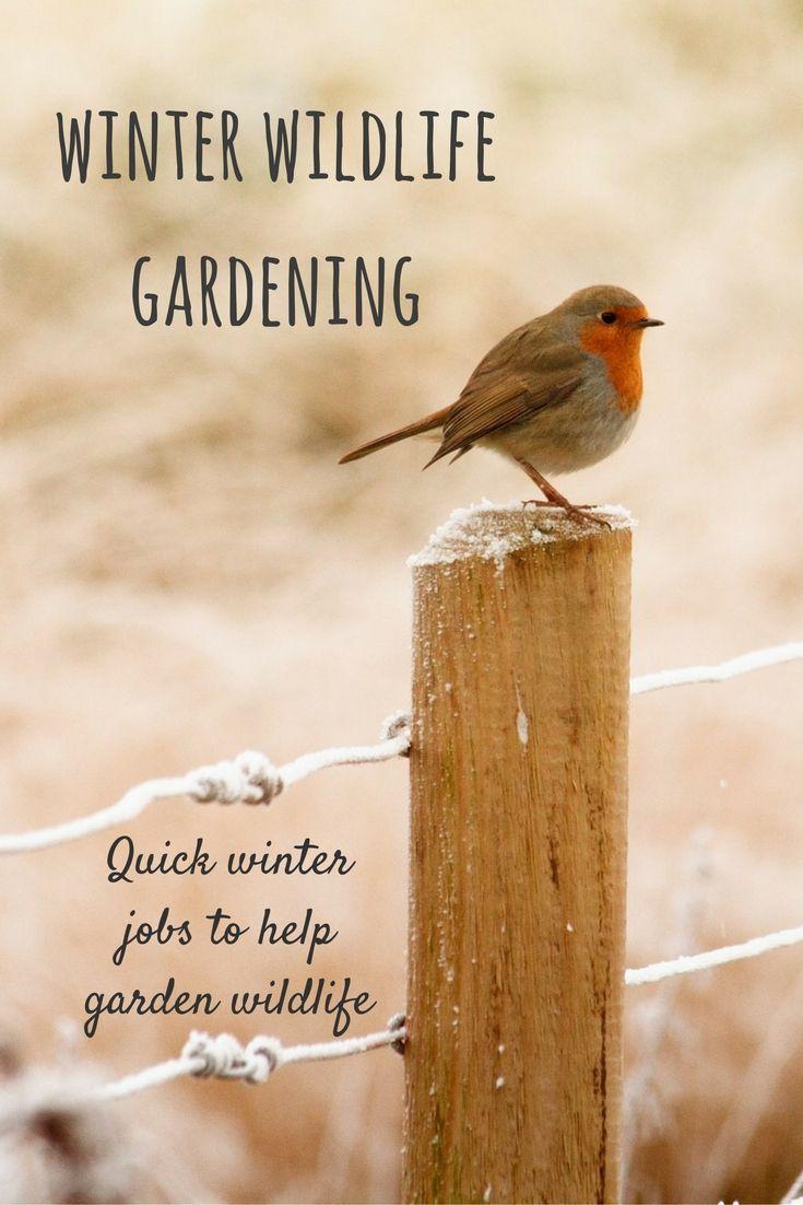 1000 Ideas About Quick Garden On Pinterest Wooden Garages Log