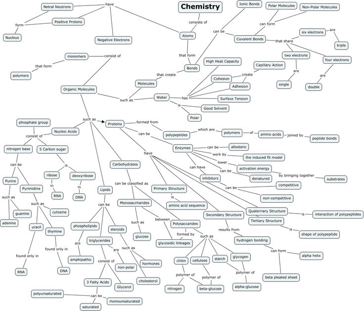Biochemistry Concept Map Answers Pictures to Pin on