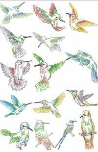Hummingbird Hand Embroidery Patterns | FREE HUMMING BIRD ...