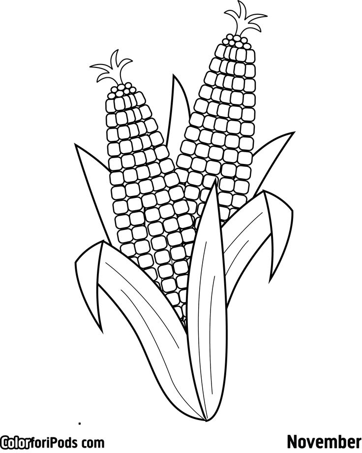 corn coloring page. aboriginal art colouring pages