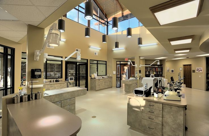 821 best images about Veterinary on Pinterest  Waiting area Economics and Dog boarding kennels