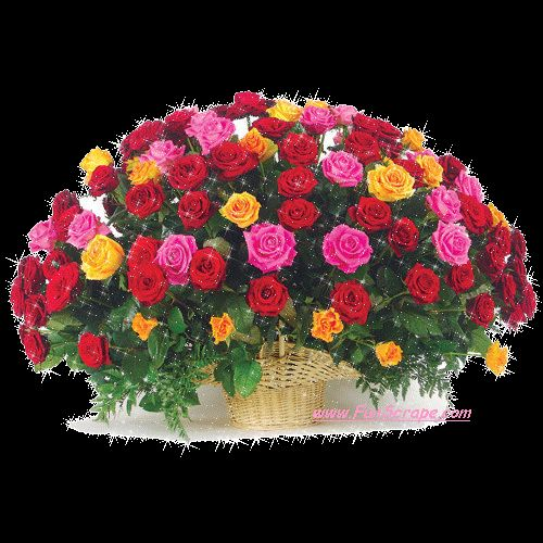 10 Best Images About Flowers Bouquet On Pinterest