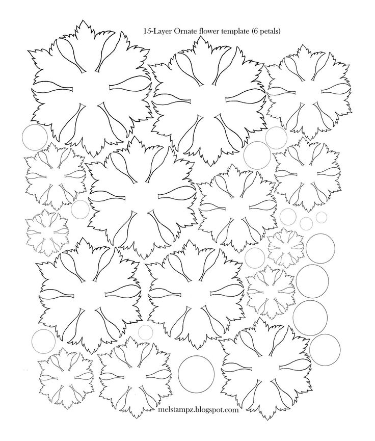 46 best images about Paper Flower Templates on Pinterest