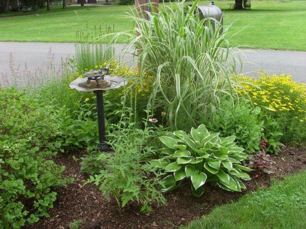 front yard mailbox garden gardening