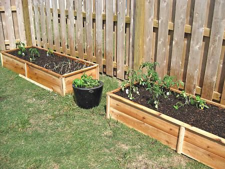 25 Best Images About Gardening Ideas For Inside Fence Ideas On