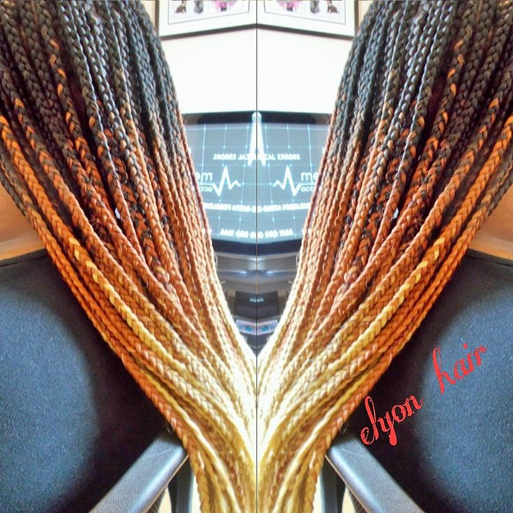 Ombre Box Braids In Small Size XX And The Four Pillars