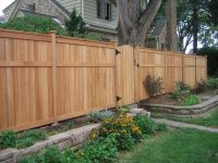 Fence for backyard. Full height for sides and back, lower ...