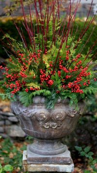 25+ best ideas about Outdoor christmas planters on ...