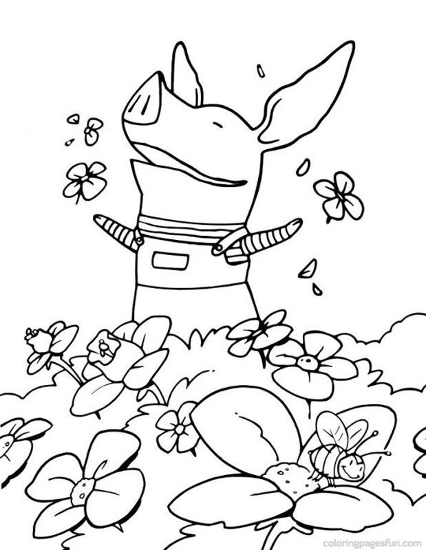 173 best images about Animals Coloring Books For Adults