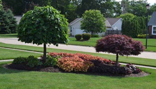 front yard island landscapes