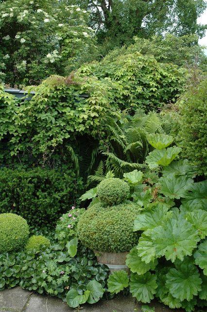 25 Best Ideas About Green Garden On Pinterest Diy Landscaping