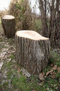 How To Make End Tables Out Of Tree Stumps