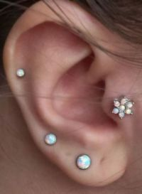 Best 25+ Ear Piercings Tragus ideas on Pinterest | Ear ...